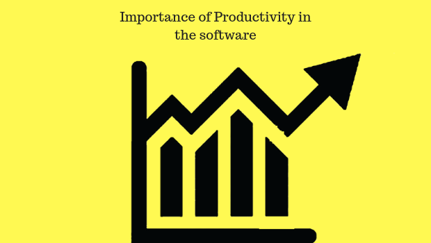 Importance of productivity in the software industry